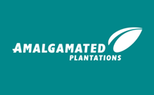 Amalgamated plantations